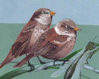 "House Sparrows - bird art print, 6"" x 6""."