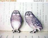Owl Brooch Set, Woodland Pin, Vintage Illustration, Forest, Natural History
