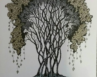 Original Ink drawing  of tree in ink and color pencil.