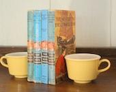 Hardy Boys Vintage Book Stack Collection Old Decorative Book Decor Nursery Decoration Blue