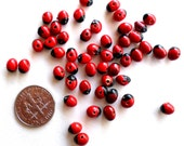 50 Amazon Beads - Fair Trade Beads - 5mm Red Black Beads - Natural Seed Beads - Huayruros Beads - Santeria Elegua Voodoo Voudoun Protection
