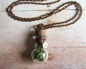 Woodland Amulet - Glass Bottle Filled with Real Reindeer Moss on Copper Chain Handmade Terrarium Necklace