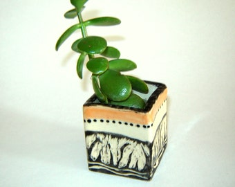 Succulent Planter – cactus pot – ceramic planter – indoor garden – windowsill planter – pottery box – cuttings pot
