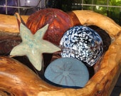 Glass Sea Star and Shell ...