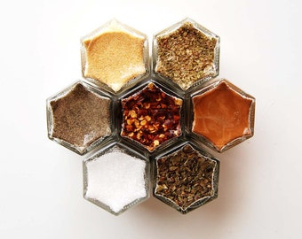 Today's Sale // Starter Kit:  Hanging Spice Rack Includes 7 Basic Organic Seasonings in Magnetic Jars. Gift Swap Idea!
