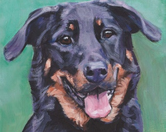 Beauceron dog portrait CANVAS print of LA Shepard painting 12x12 dog art