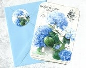 Hydrangea, Note Card Set, Floral Note Cards, French Hydrangea, Stickers