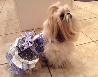Dog Harness Dress Blue French Script Small