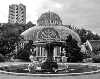 Greenhouse - Architectural Photography