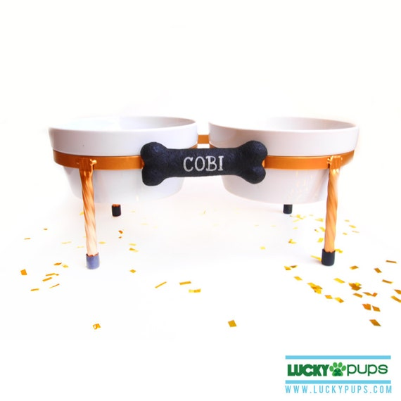Best Of Ceramic Dog Bowls With Stand