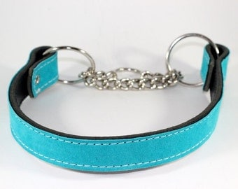 """Martingale Leather Dog Collar - 1"""" Leather Suede Martingale Collar, Suede Dog Collar -Turquoise Suede"""