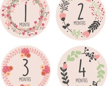 Printable baby posey flower monthly onesie sticker Digital instant Download PDF