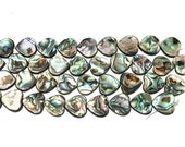 Abalone Paua Shell Heart Beads - 16 x 16mm - 10 Bead Strand - double sided - center drilled thru long axis