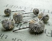 Decorative Bobby pins set of six