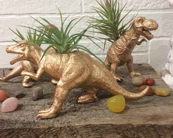 Air plants, dinosaurs, planters, home decor, Tillandsais,
