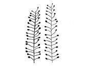 Botanical Print: Ackertäschelkraut on handmade paper