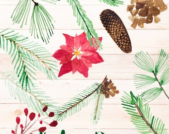 Handpainted watercolorChristmas Spruice Pine Branches Poinsettia Pinecone clip art, overlays, digital embellishments PNG