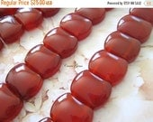 """20% OFF ON SALE Carnelian Double Drilled Rectangle 20mmx15mm Beads, 16"""" Long, 27 pcs"""