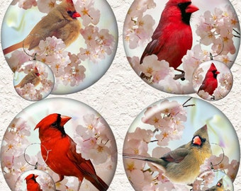 "Cardinal Coaster Set 3.5"" in Size With or Without a Matching Set of 4 Cardinal Wine Charms 1.5"" Buy 3 Sets Get 1 Full Set Free  018AWC"