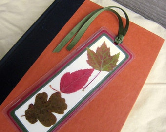Red and Green Pressed Fall Autumn Leaves Laminated Bookmark