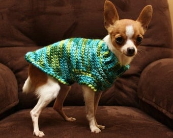 Sweater for small breed dog ( approx 2 to 5 lbs) Shades of green and turquoise