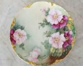 Gorgeous Haviland Limoges plate ~ Haviland plate ~ floral plate ~ Limoges France antique plate ~ hand painted ~ Art Nouveau Victorian