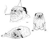 Davie the Pug