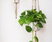 Macrame plant hanger cotton natural