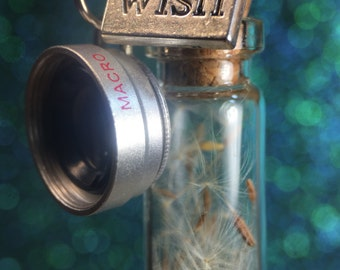 Macro Lens and Dandelion vial