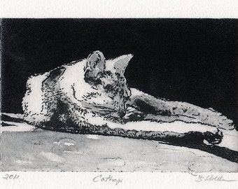 Cat art -  etching of a relaxing feline