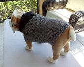 "Dog Sweater Hand Knit English Bulldog Winston 18"" inches long Merino Wool"