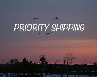 DOMESTIC USPS PRIORITY Shipping, Expedited Shipping, Faster Shipping