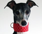 Red Quatrefoil - Italian Greyhound Collar -  in 3 styles - for information - see details