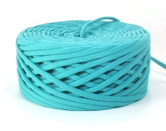 Robin's Egg Blue T Shirt Yarn 57 Yards Recycled - Upcycled Reclaimed Tshirt