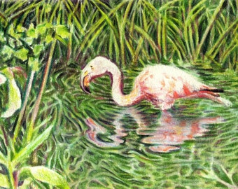 """Original ACEO - Flamingo in a Pond - 2.5"""" x 3.5"""" Unique Artwork - Free Shipping - Portion of Proceeds to Charity"""