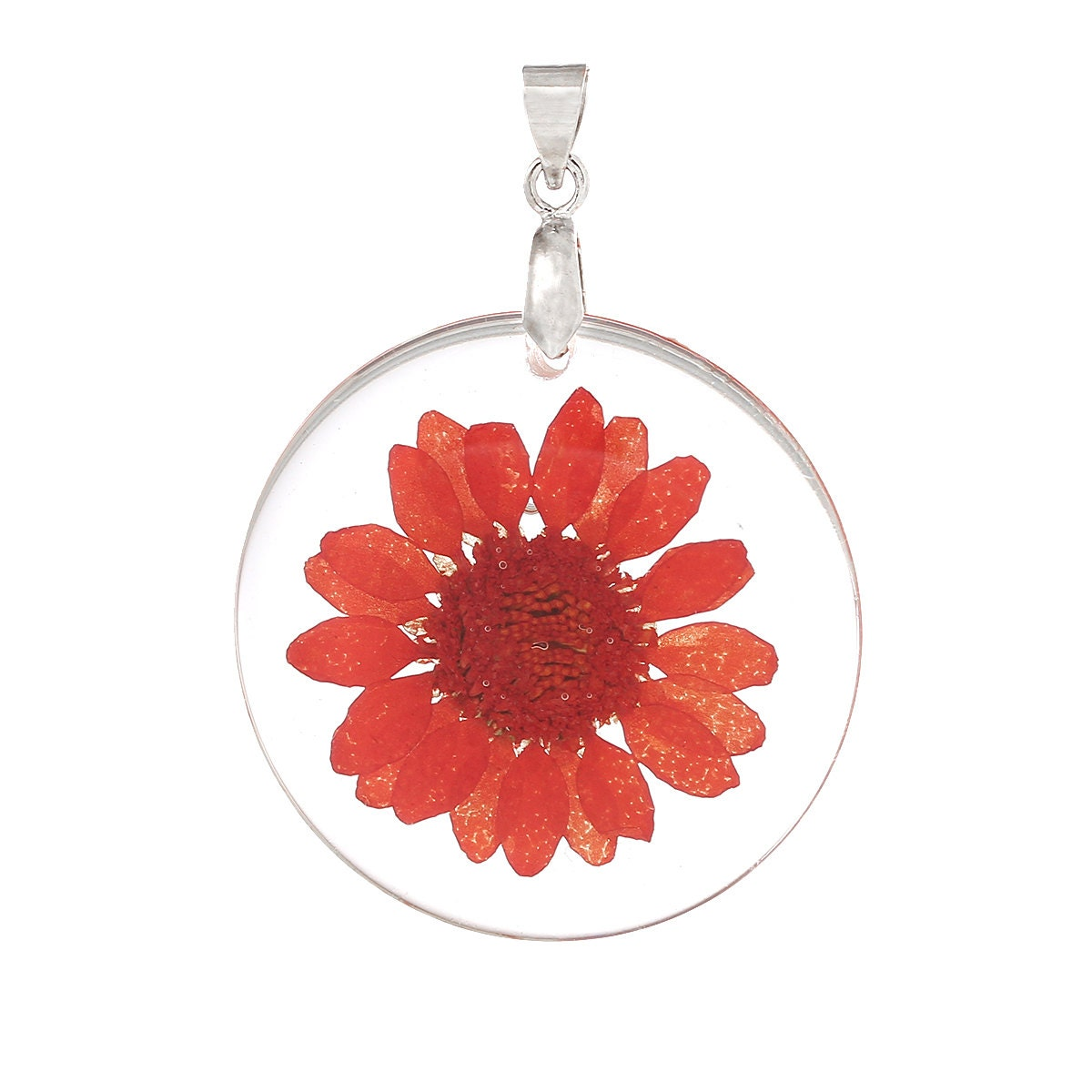 2 acrylic pendants natural real flowers coral red flower with 2 acrylic pendants natural real flowers coral red flower with leaves circle disc shape silver bail 1 14 diameter cha0185 mozeypictures Image collections