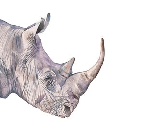 Rhinoceros PAINTING, rhinoceros print, rhinoceros watercolor painting R2014, 5 by 7 size, african animal watercolor painting