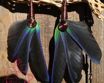 Blue and Green Macaw Feather Earrings