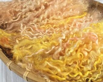 Hand Dyed British Teeswater Wool locks. 58gms for Waldorf Dolls, Art Dolls, Blythe Dolls, Puppets Hair and Wigs 'Rhubarb & Custard' colorway