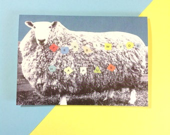 Welsh Penblwydd Hapus Birthday Sheep Eco Friendly Greeting Card