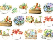 Succulent in Hand Drawing Style 02 - Japanese Washi Masking Tape - 30mm Wide - 7.6 Yards