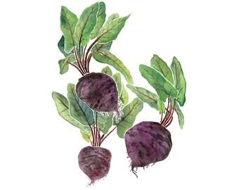 Purple Beets 4x6 8x10 Art Print, Farmhouse Kitchen Illustration, Minimalist Food Art Print, Colorful Kitchen Art, Real Food Watercolor Print