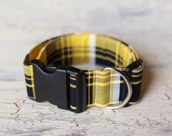 2 Inch Adjustable Dog Collar - Medium/Large