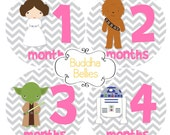 Star Wars Baby Fans Celebrate with Baby Month Stickers Girl Baby Shower Baby Stickers Nursery Monthly Baby Stickers
