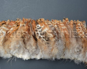 Wholesale/Bulk feathers - Natural striped rooster schlappen feathers brown red chinchilla feathers strung  / 10 in (25 cm) strung / FB142-4