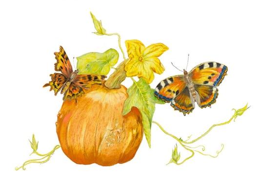 LIMITED EDITION of a Feng Shui Symbol of Prosperity, Harvest Time, Pumpkin Art, Pumpkin patch, Vegan Beauty, Orange Vegetable, Feng Shui Art
