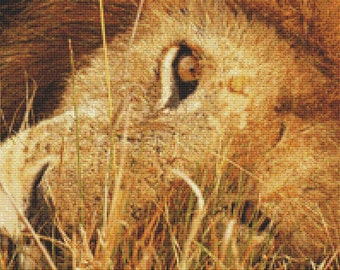 Relaxing Lion Cross Stitch Pattern Animal Series Design Instant Download PdF