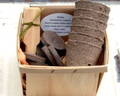 Herb Seed Kit, Herb Garden Kit, Garden Gift Set, Gift For Gardener, Hostess Gift, Indoor Herb Garden Kit Grow Fresh Herbs