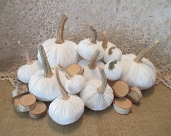White Velvet Pumpkins with real stems for an Autumn Wedding