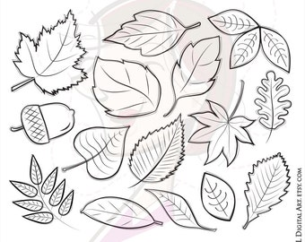 Fall Autumn Leaves Clipart Digital Stamps Clip Art Whimsical Acorn White Birch Oak Red Maple Leaf Hand Drawn Doodles Commercial Use 10032